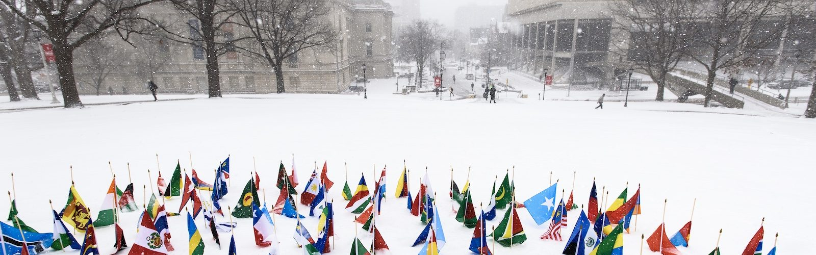International flags in snow
